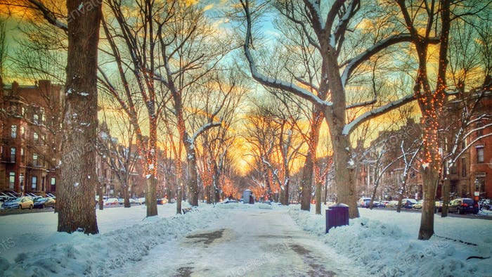 Lookin down Commonwealth Avenue as the sun sets in Boston, MA after a snowstorm.
