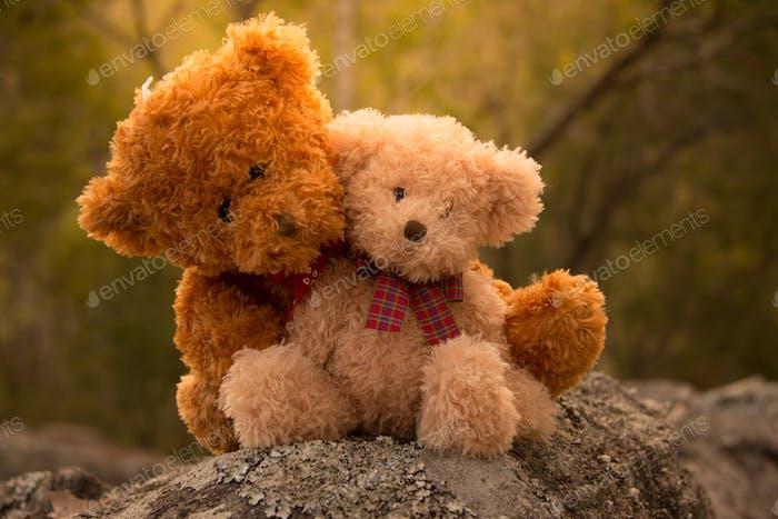 Teddybär Liebe