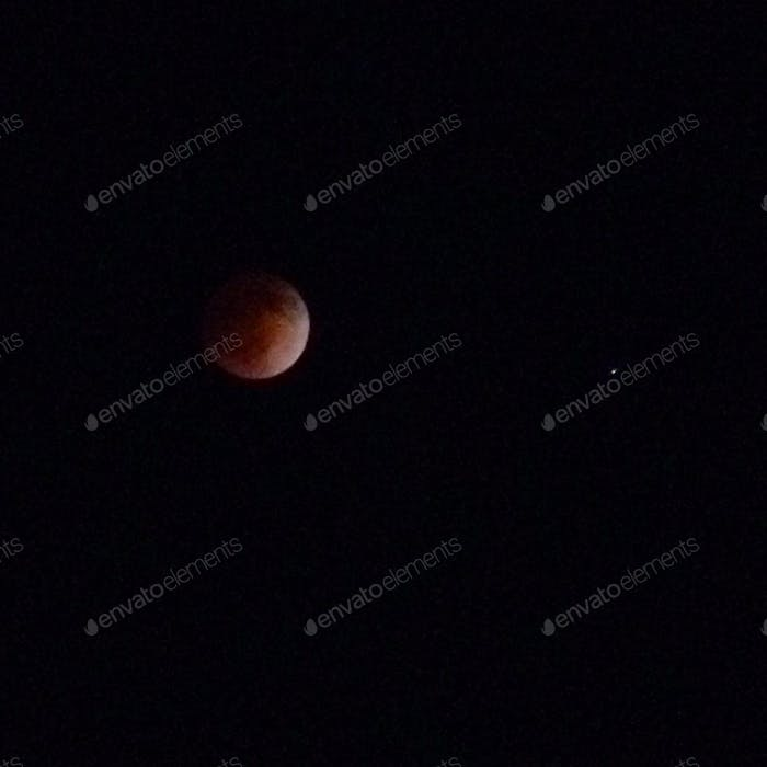 Photo of the Blood Moon taken from San Diego on an iPhone camera with tripod and attached zoom lens