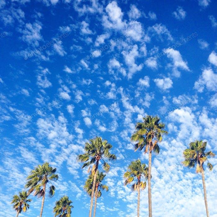 Wandern in Los Angeles, Kalifornien