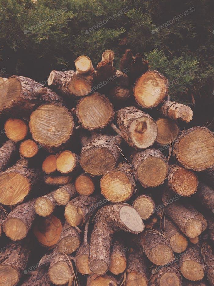 logs on logs on logs