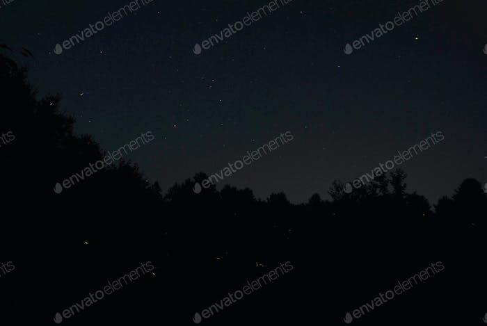 captured this on a magical evening in my backyard using a Nikon D60 with 18mm lens shot with 200 ISO