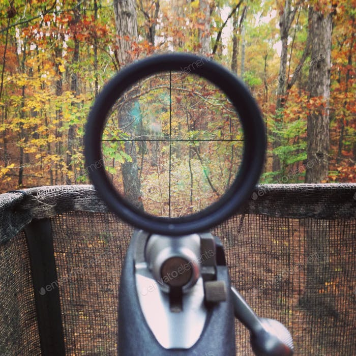 Scope view of a 7mm08