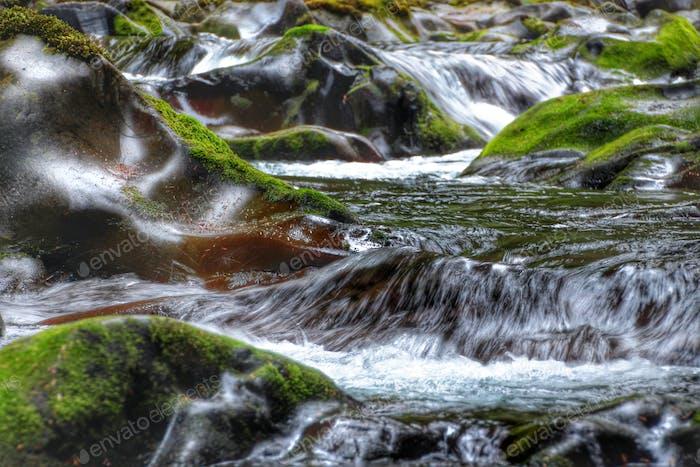Sol Duc Wasserfälle im Olympischen Nationalpark