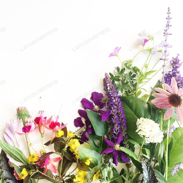 A colorful collection of summer garden flowers on a white background.