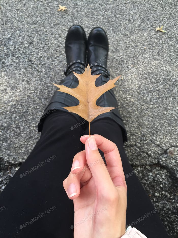 Fallen für den Herbst