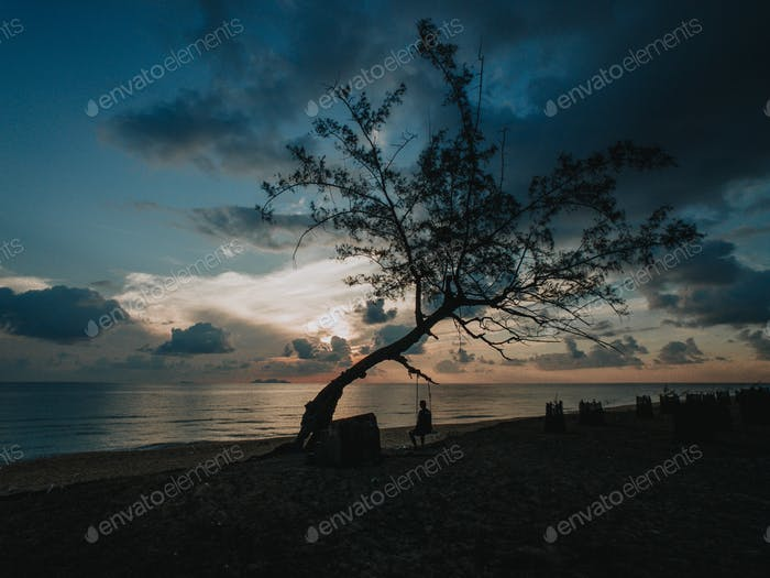 Lonely people lonely tree