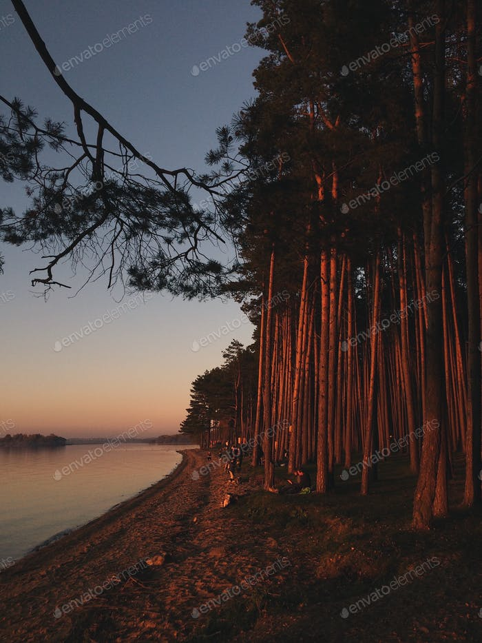 Sunset on the seashore