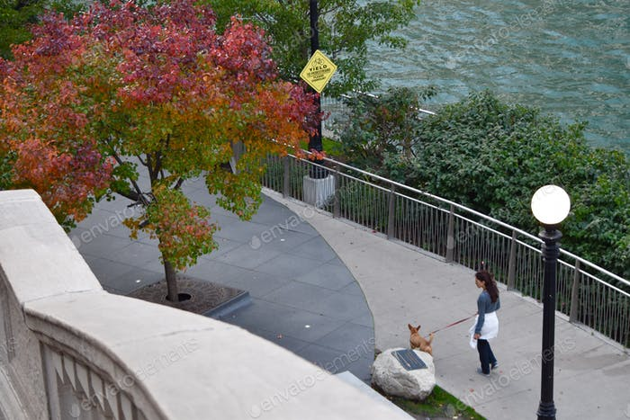Woman walking dog along the Chicago riverfront in autumn