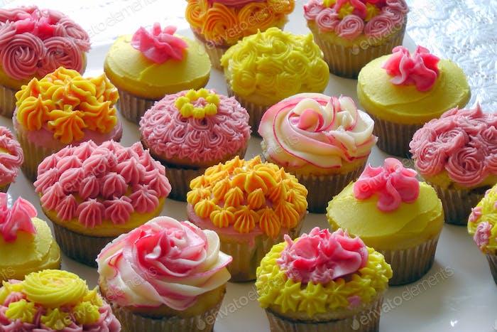OMG sweets!