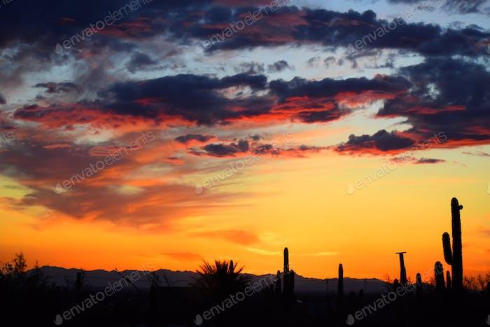 Beautiful Moment of the Arizona Sunset