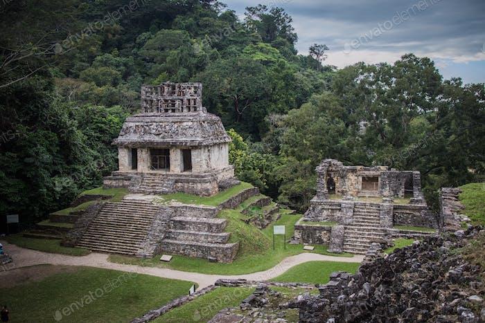 Mexican treasure