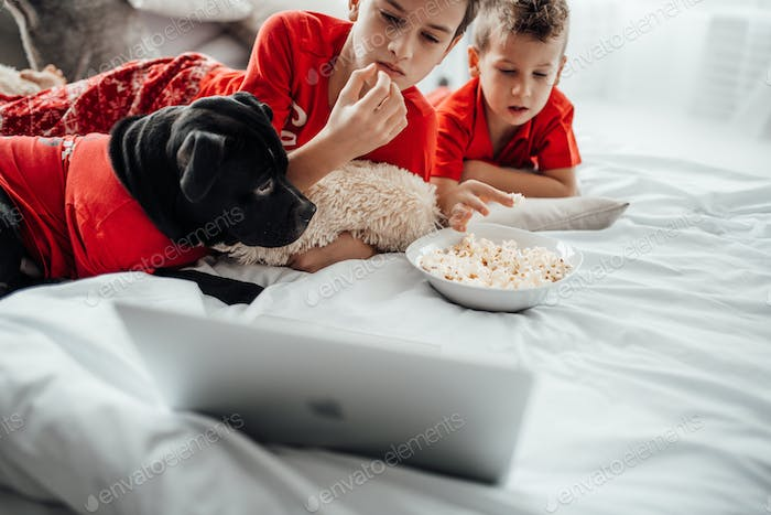 christmas time cozy family with popcorn watching netflix channel television laptop brothers fun