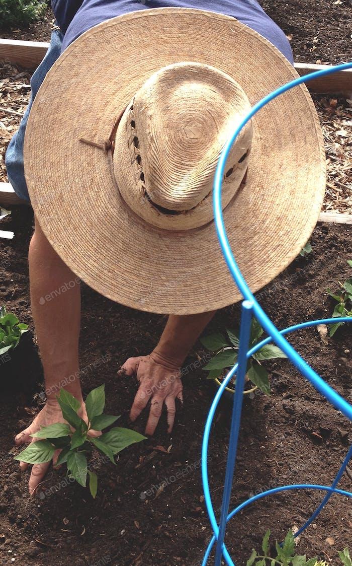 """""""Gardeners gardening in the garden"""""""