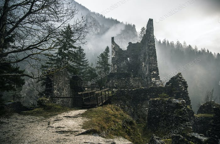 Abandoned Castle Ruins in the Forest.