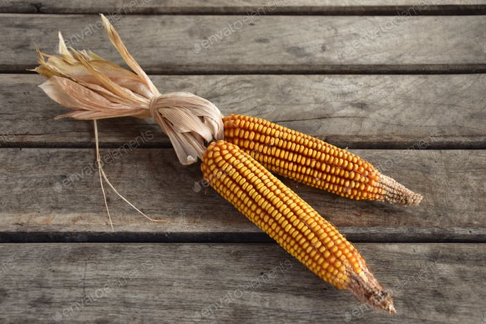 Corn cob on wooden table - directly above