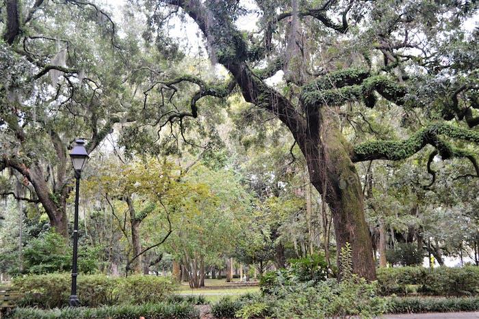 Historical Savannah, Georgien