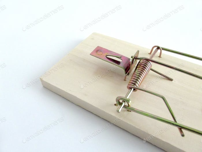 Bare wooden mouse trap