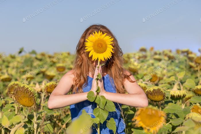 Woman practicing mindfulness in the field of sunflowers. Namaste, om, positive approach to life.