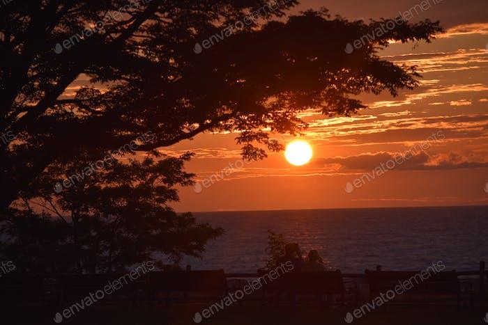Lake Ontario sunsets