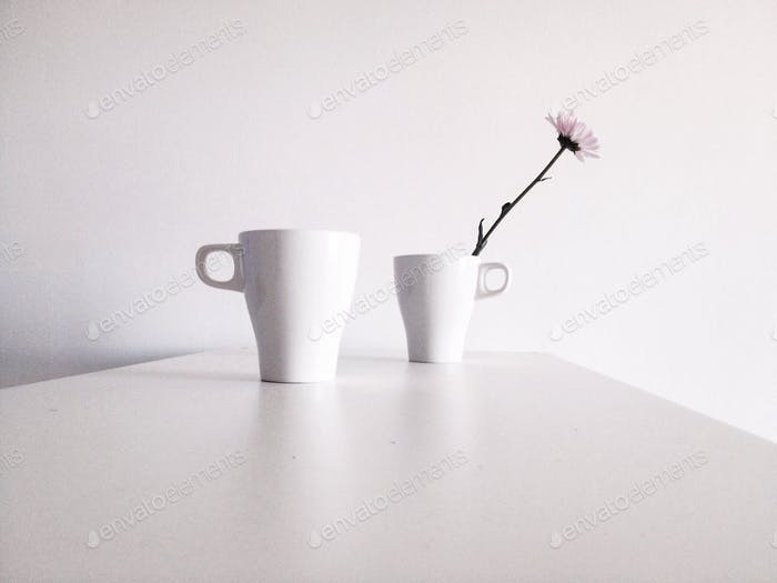 two white cups on a white wall background