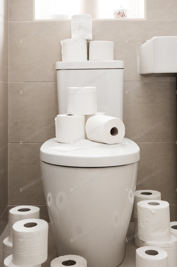 A toilet surrounded by lots of toilet rolls