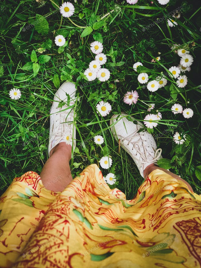 Nature in summer, daisies, yallow dress