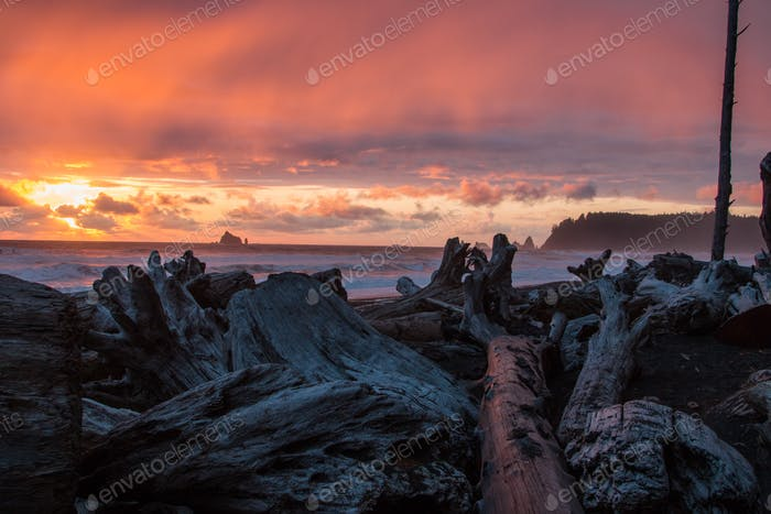 Sunset on the Pacific Northwest
