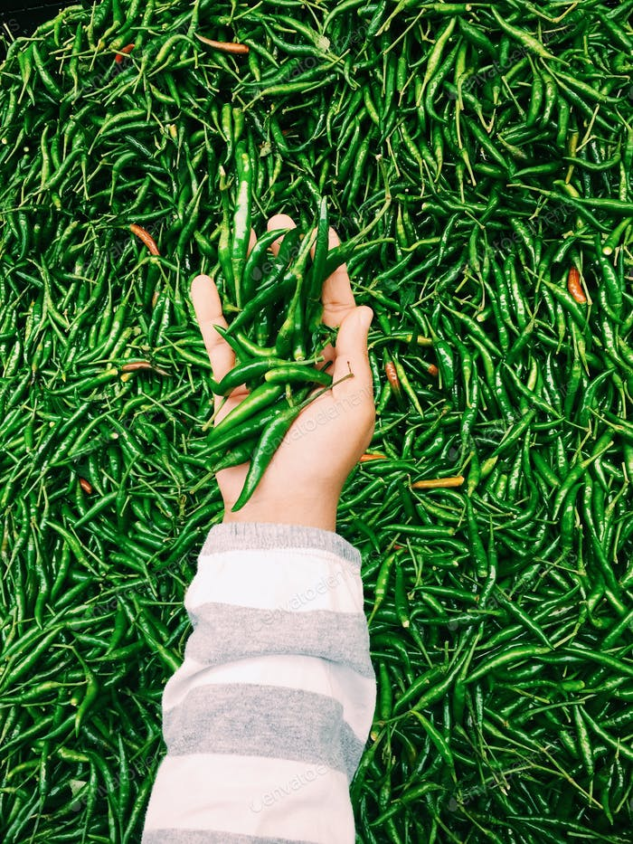 Handvoll heiße grüne Chillies, um Ihr Leben aufzupeppen