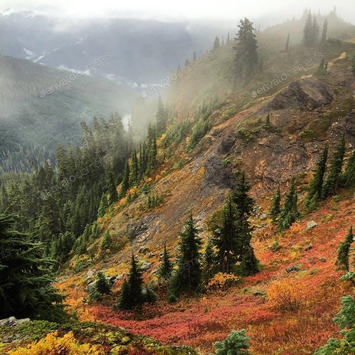 Gelber Aster Butte: eine atemberaubende Herbstwanderung in den Nordkaskaden.