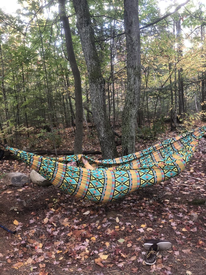 Man peeking out of a hammock