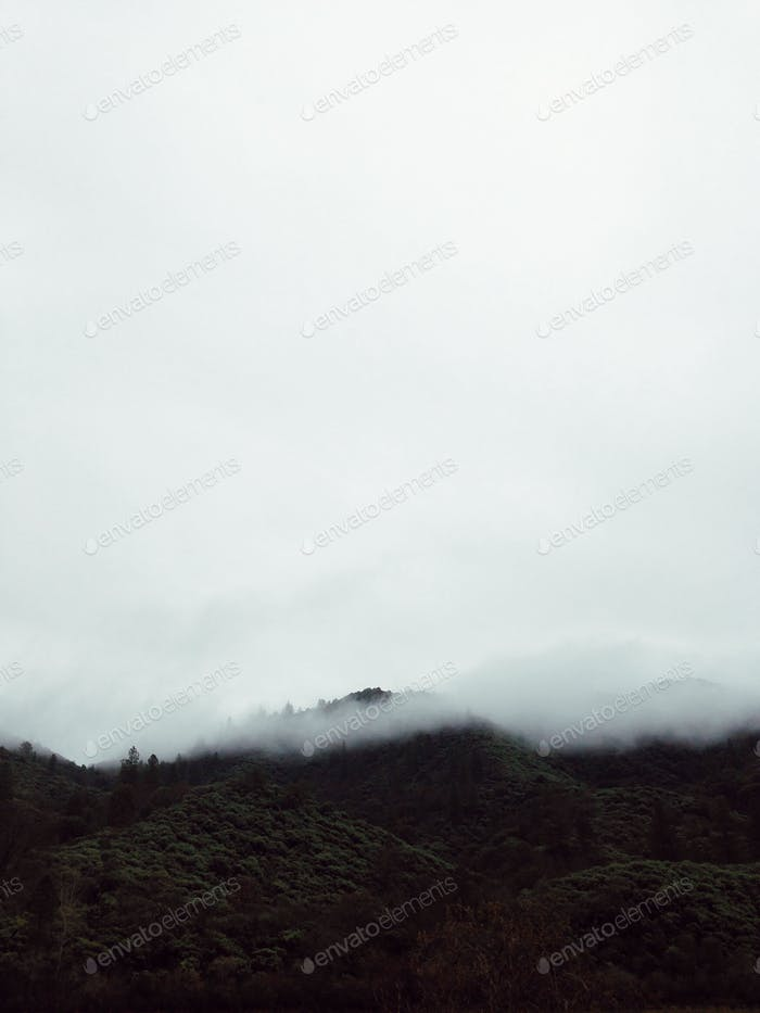 The Foggy Mountain.