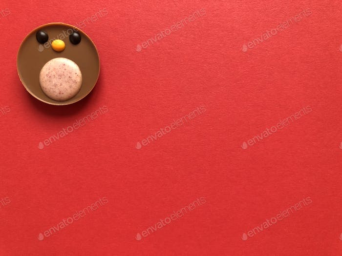 Creative food concept.  Chocolate Christmas robin redbreast on a red background with copy space