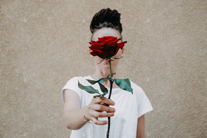 Flower power, signs of peace, stop violence, peaceful protest symbol. One red rose in female hand