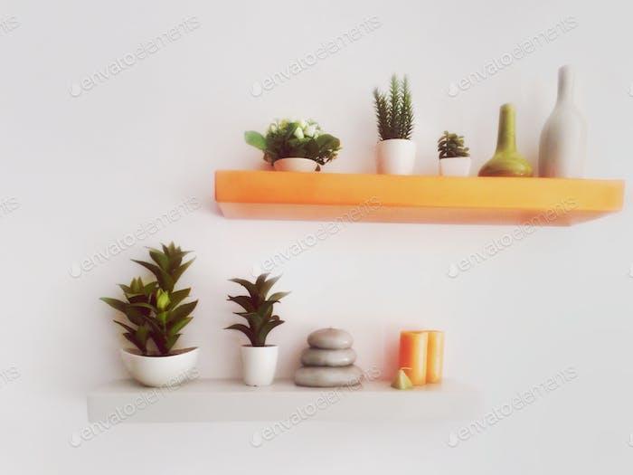 hooked little garden