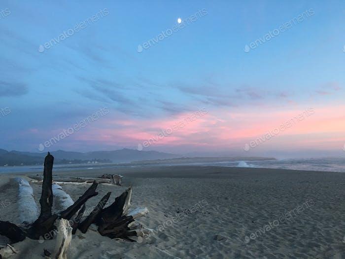 Beach Landscape Lincoln city Oregon at sunset💕