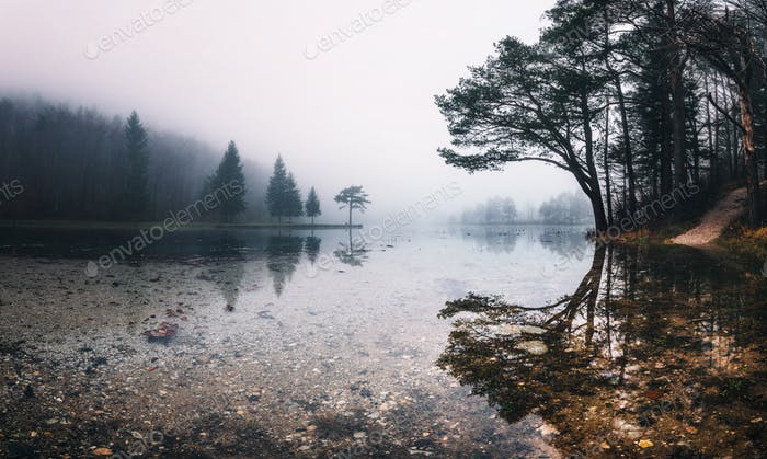 Gloomy autumn day by the lake