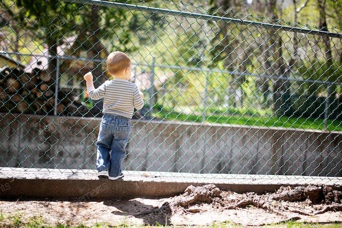Kleiner Kleinkindjunge klettert einen Kettenglied-Zaun