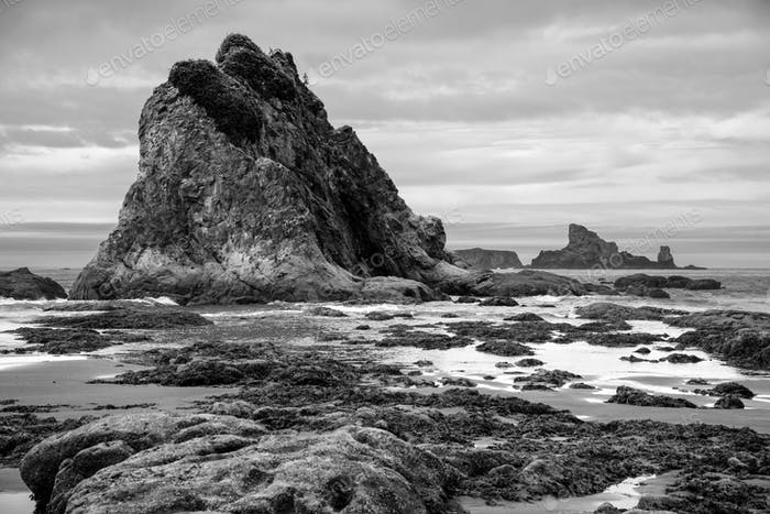 Dramatic Pacific Northwest beach scene with large haystack rock formations in black and white.