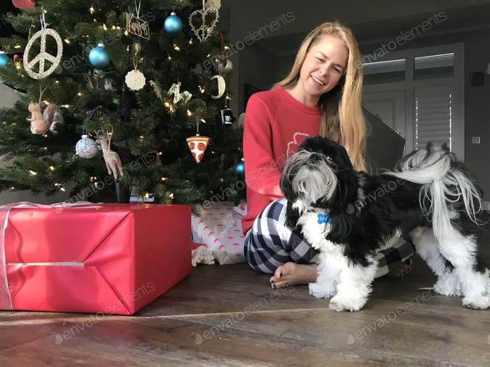 Ziggy a Lhasa poo dog is anxious to open his presents by the tree