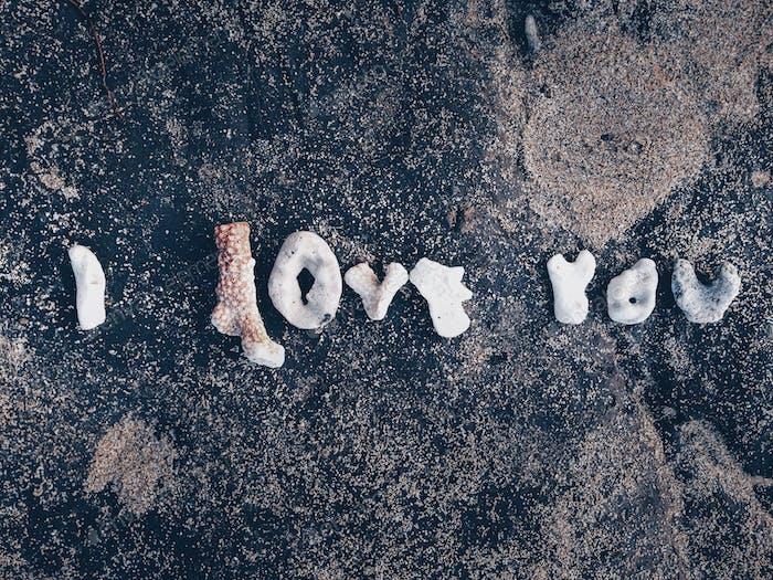 Valentine's Day; I love you