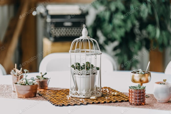 A flower pot inside of a birdcage for wedding details with an old typewriter in the background