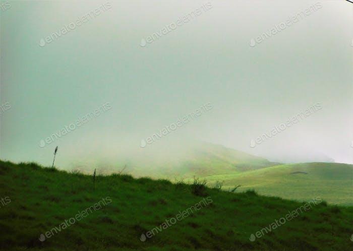 Finding Fog