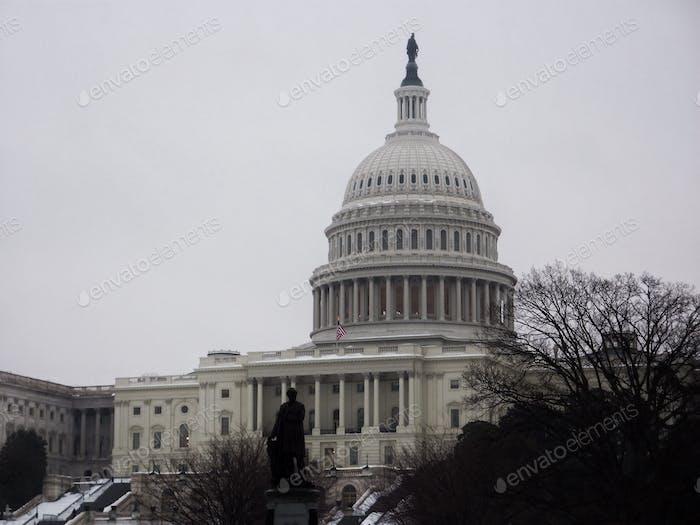 US capital Building in Washington D.C.