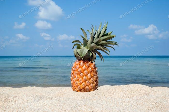 Ananas am weißen Sandstrand auf dem Hintergrund des blauen Meeres und des Himmels an einem sonnigen Tag