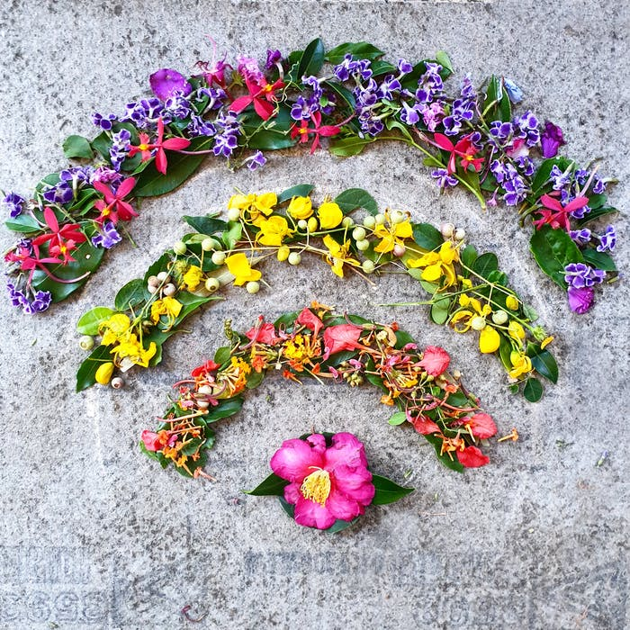 Connect with nature,creative wifi signal made with flowers