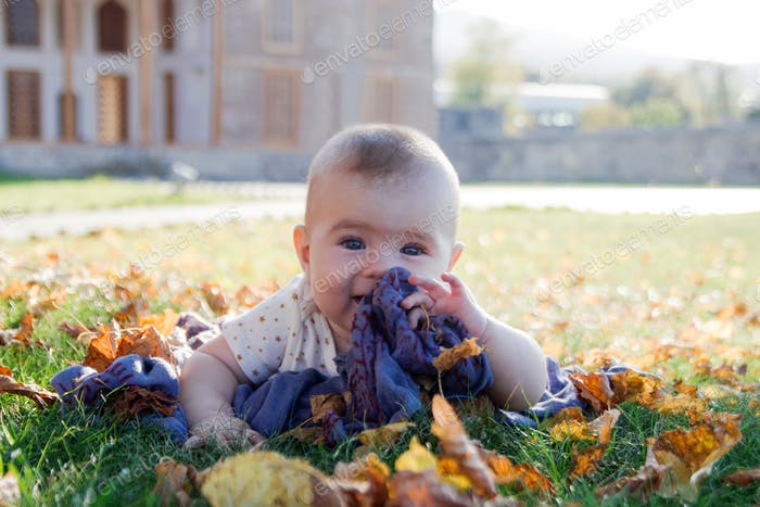 Portrait of little girl on a grass in a park playing with dry yellow leaves on a sunset. girl, baby,