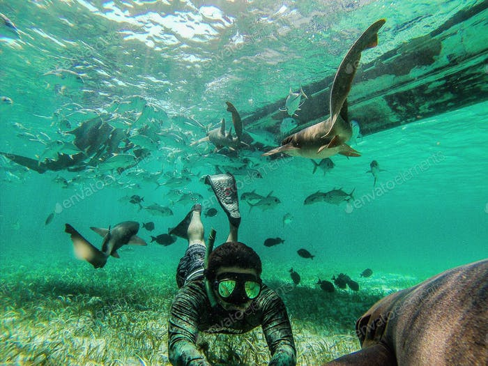 Freediving in The caribbean.