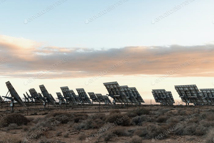 solar panels in field collect solar energy, eco-friendly modern technology without eco-footprint