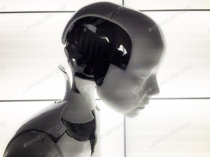 Robotic Minimalist